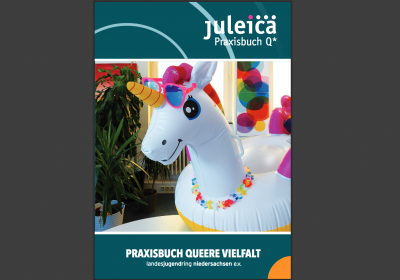 Neuerscheinung: Praxisbuch Q* Queere Vielfalt in der Jugendarbeit